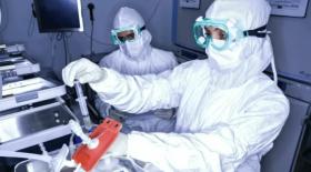 Стартап Cell Vault предлагает услугу заморозки иммунных клеток — их модификация может вылечить множество видов рака