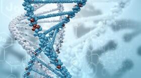 Геномное профилирование злокачественных опухолей FMI может быть внедрено в российских онкоцентрах