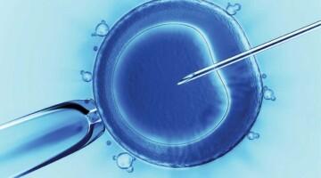 Криоконсервация и хранение  репродуктивного материала  как метод сохранения фертильности онкологических пациентов