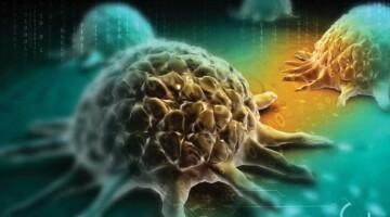 Иммунотерапия немелкоклеточного  рака легкого: осталось ли место для химиотерапии?