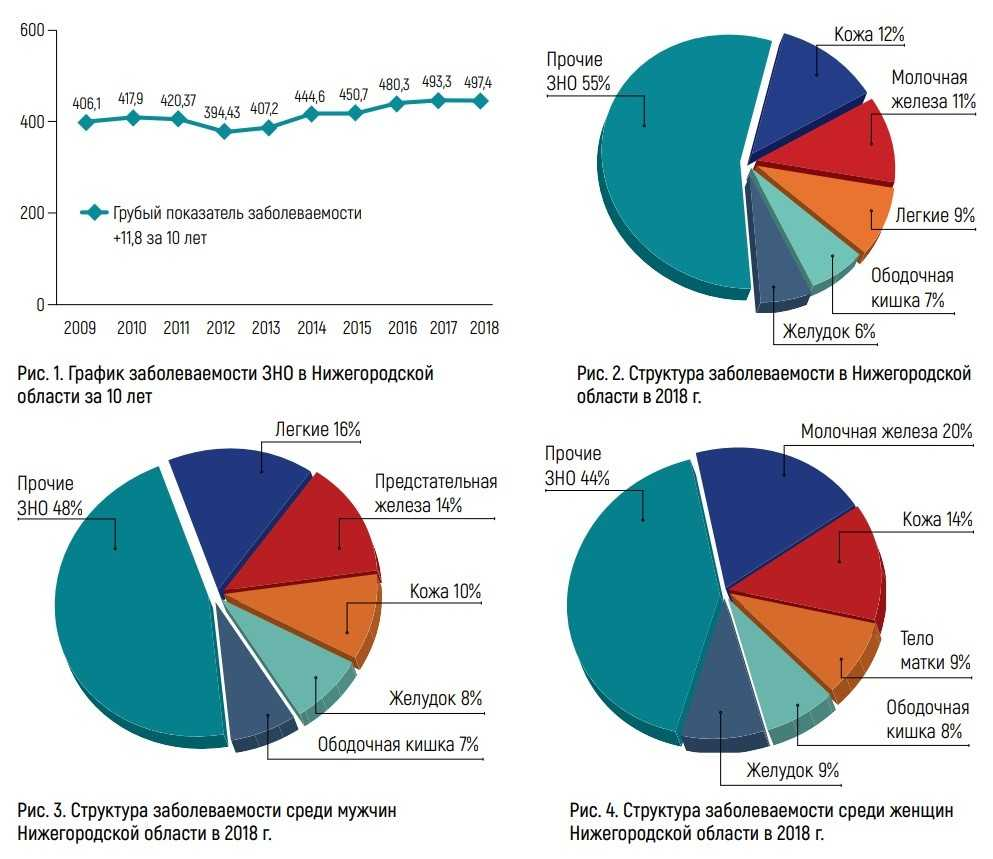 Структура заболеваемости злокачественными новообразованиями в Нижегородской области
