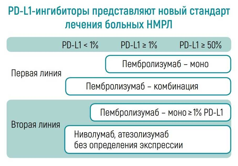 Линии терапии НМРЛ при использовании PD-L1-ингибиторов