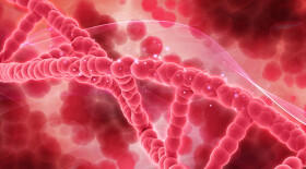 Отмена ИТК может улучшить исход миелолейкоза