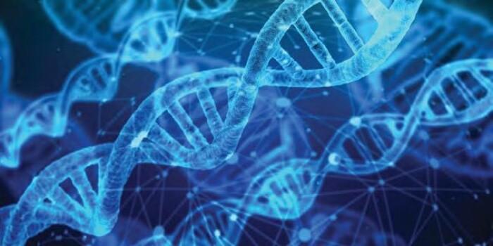 ДНК-диагностика наследственного рака толстой кишки: особенности и возможности