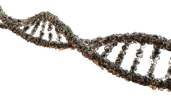Россияне не знают о важности определения генетической предрасположенности к онкологическим заболеваниям