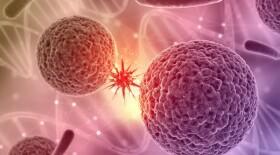 День защиты женского здоровья: будущее без рака шейки матки